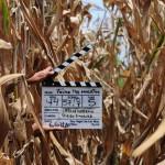 64-A Films